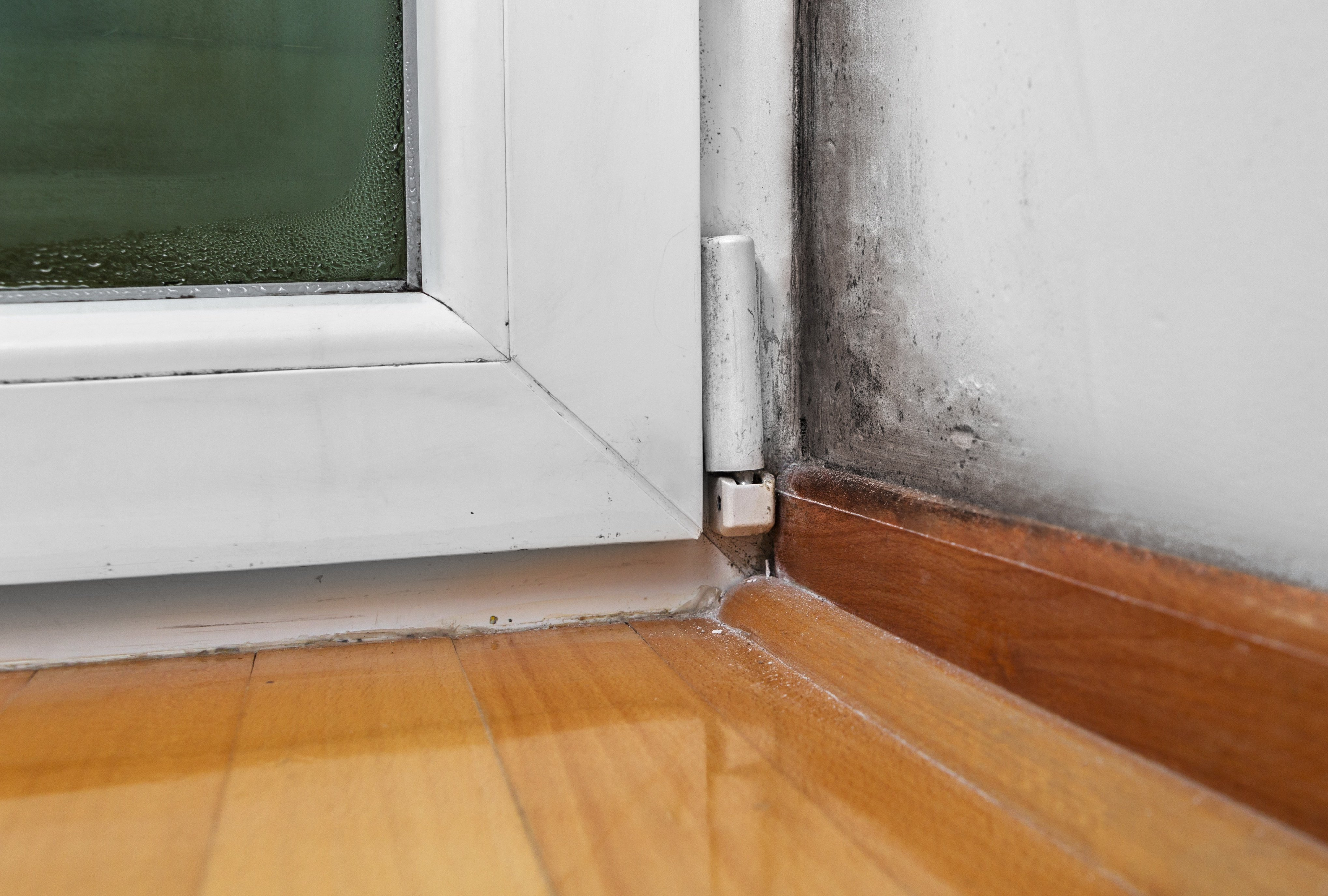How to Repair a Rotted Door Frame