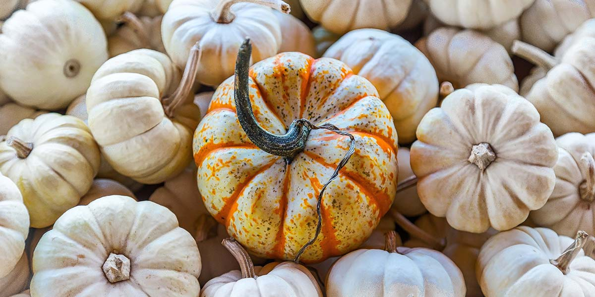 5 Ways to Use Pumpkins to Decorate Your Door This Fall